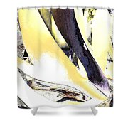 Graphics2 Shower Curtain