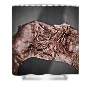 Grasping Shower Curtain