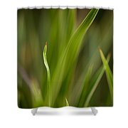 Grass Abstract 1 Shower Curtain by Mike Reid