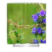 Grass And Flower  Shower Curtain