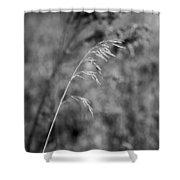 Grass Blade Shower Curtain