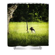 Grass Coverage Shower Curtain