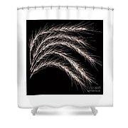 Grass Curve Coppertone Shower Curtain