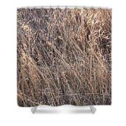 Grass Detail Shower Curtain