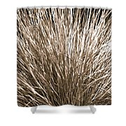 Grass Explosion Shower Curtain