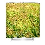 Grass Field Landscape Illuminated By Sunset Shower Curtain