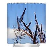 Grass Florets Shower Curtain