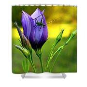 Grass Hopper Having Lunch Shower Curtain
