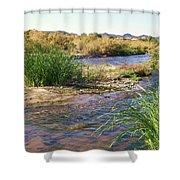 Grass Island Shower Curtain