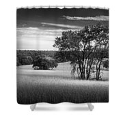 Grass Safari-bw Shower Curtain