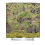 Grass Tree Shower Curtain