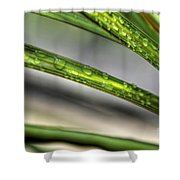 Grass With Droplets Shower Curtain