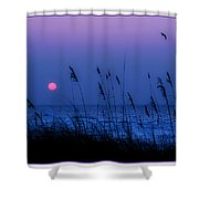 Grasses Frame The Setting Sun In Florida Shower Curtain