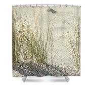Grasses On The Beach Shower Curtain