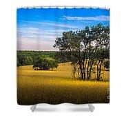 Grassland Safari Shower Curtain