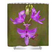 Grasspink #1 Shower Curtain