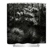 Grasstrees Shower Curtain