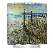 Grassy Beach Post Morning 1 Shower Curtain