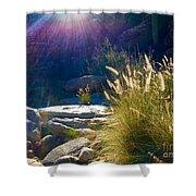Grassy Sun Rays Shower Curtain