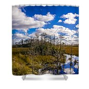 Grassy Waters 3 Shower Curtain