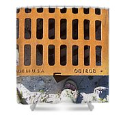 Grate In Summer Sun Shower Curtain