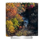 Graveyards Fields. Shower Curtain