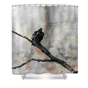 Gray Day Vulture Shower Curtain