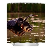 Gray Heron Shower Curtain