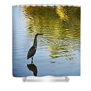 Gray Heron  Shower Curtain