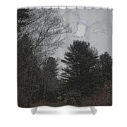 Gray Skies Over The Pines Shower Curtain