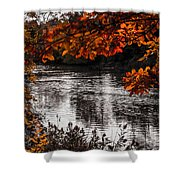 Gray Stream Shower Curtain