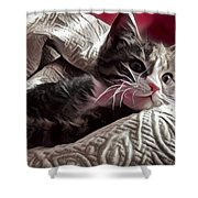 Gray Tabby With White Quilted Throw Shower Curtain