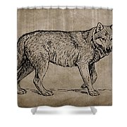 Gray Wolf Timber Wolf Western Wolf Woods Texture Shower Curtain