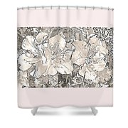 Grayscale Bevy Of Beauties With Sepia Tones Shower Curtain