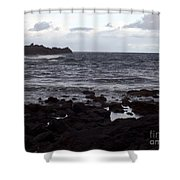 Grayscale Shower Curtain