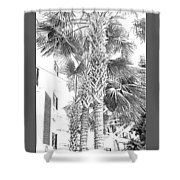 Grayscale Palm Trees Pen And Ink Shower Curtain