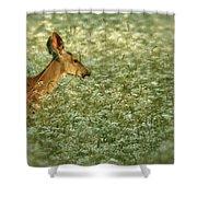 Graze Shower Curtain