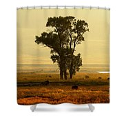 Grazing Around The Tree Shower Curtain