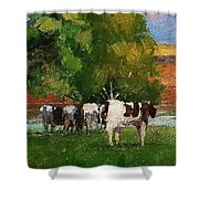 Grazing By Our Creek Shower Curtain