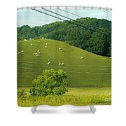 Grazing On The Mountain Side Shower Curtain