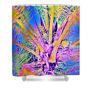 Great Abaco Palm Shower Curtain