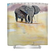 Great African Elephant  Shower Curtain