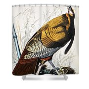 Great American Turkey Shower Curtain