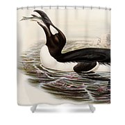 Great Auk Shower Curtain
