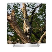 Great Blue 2 Shower Curtain