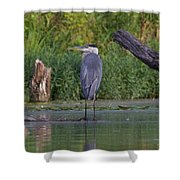 Great Blue 3 Shower Curtain