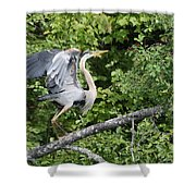 Great Blue Ballet Shower Curtain