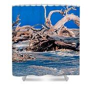 Great Blue Driftwood Shower Curtain