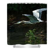 Great Blue Fly-by II Shower Curtain