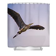 Great Blue Gliding Shower Curtain